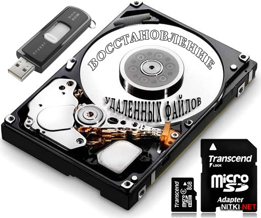 Raise Data Recovery for FAT / NTFS 5.4 Datecode 20.08.2012