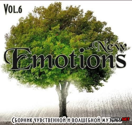 New Emotion Vol.6 (2012)