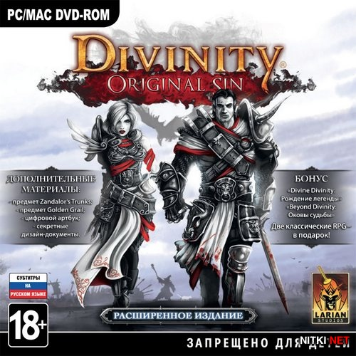 Divinity: Original Sin. Digital Collectors Edition *v.1.0.219 + DLC's* (2014/RUS/ENG/RePack by Decepticon)